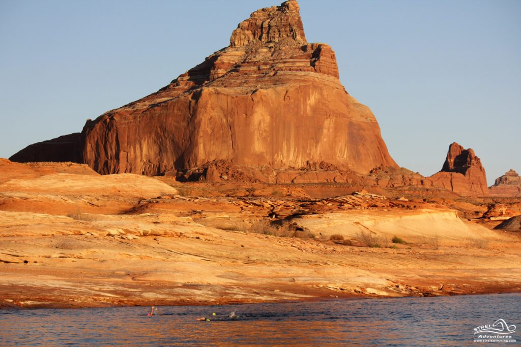 Strel-Swimming-Lake-Powell-Vacation-14
