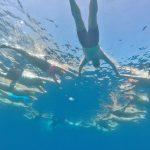 Guide group swimming Mediterranean