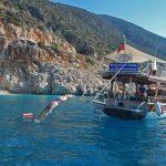 Turkey swimming