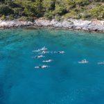 Swimming-Holidays-Vacations-Group