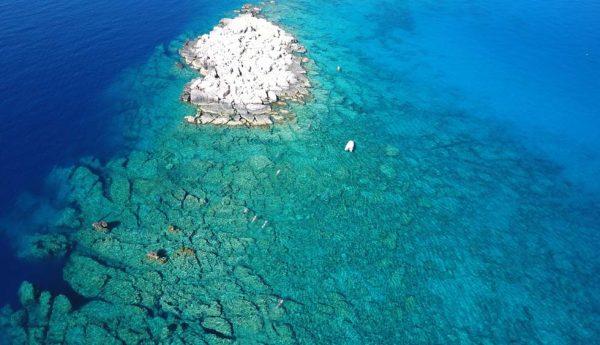 Group-Swimming-Mediterranean