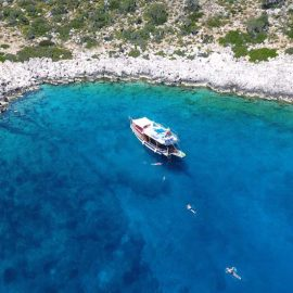 Swimming-Boat-Tours