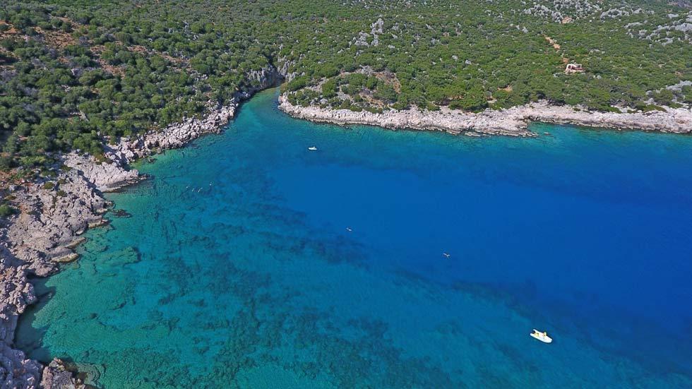 Swimming-In-Bay-Turkey