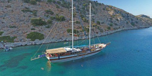 Swimming-Cruise-Boat