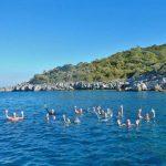 Open-Water-Sea-Swimming