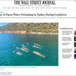 Swimming-Turkey-Article-Wall-Street-Journal