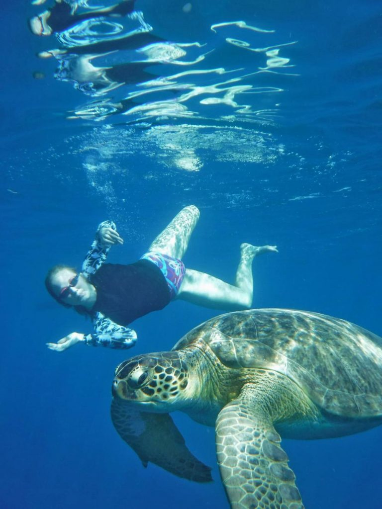 Swimming-With-Turtles-Holidays