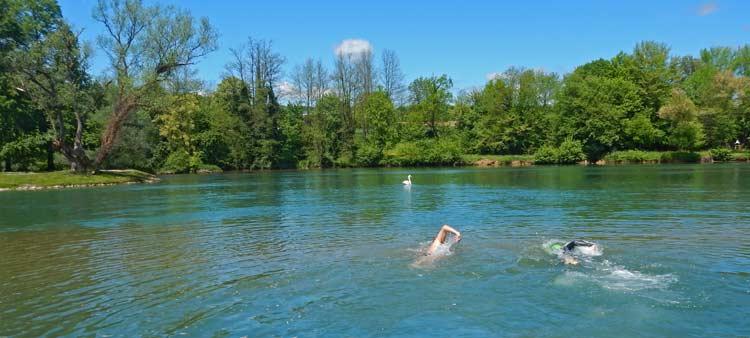 Krka-River-Swimming