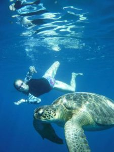 Swimming-With-Turtle-Holiday