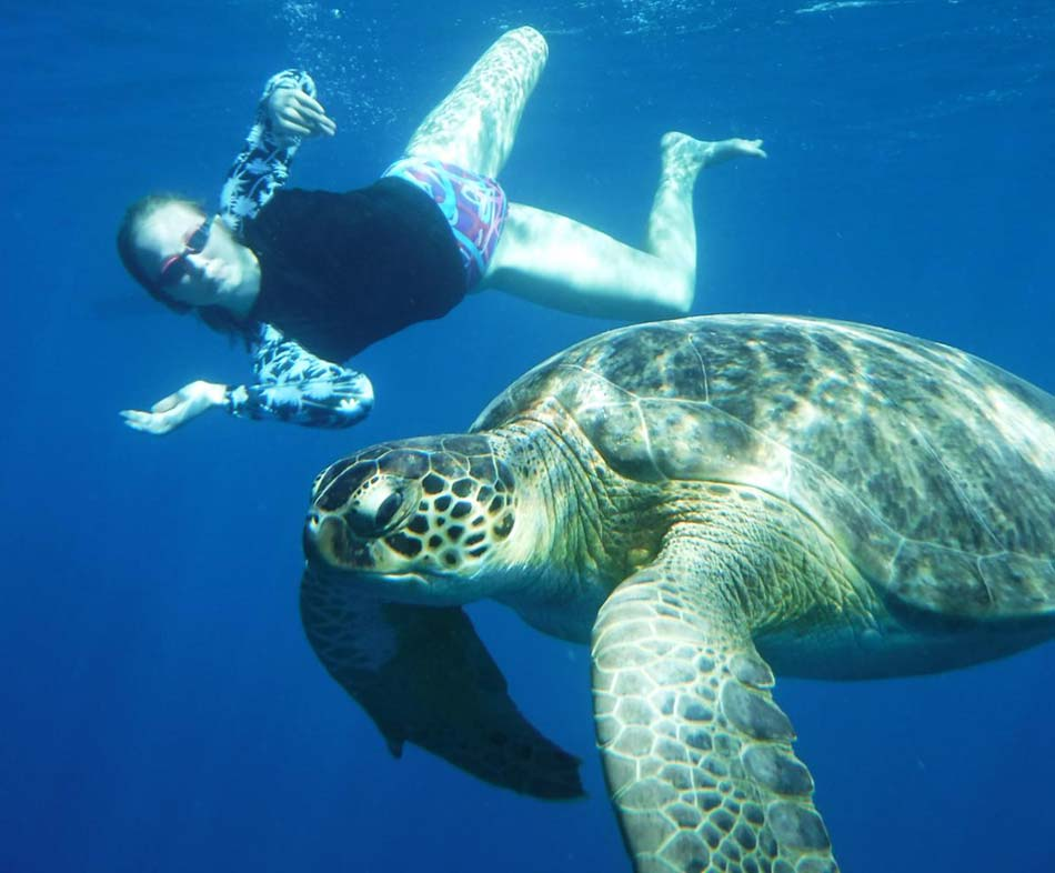 Swimming-With-Turtles-Holiday