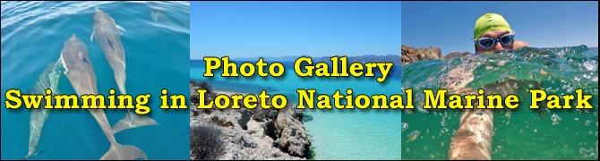 Swimming-Loreto-Park-Mexico